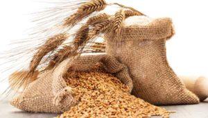 Kostfibre - fordele og ulemper - del 1