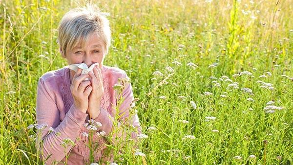 Kvinde pudser næse ude blandt markblomster. Pollensæsonen nærmere sig. Find ud hvordan du styrker dit immunforsvar og holder pollen og andet skidt væk.